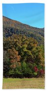 Autumn Colours In Great Smoky Mountains National Park Beach Towel