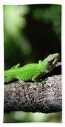 Green Lizard Beach Towel
