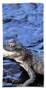 Little Gator Beach Towel