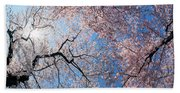 Low Angle View Of Cherry Blossom Trees Beach Sheet