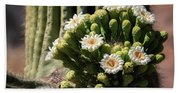 Saguaro Blossoms  Beach Sheet