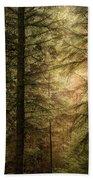 Stunning Fine Art Landscape Image Of Winter Forest Landscape In  Beach Towel