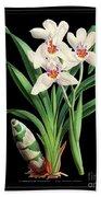 Vintage Orchid Print On Black Paperboard Beach Towel