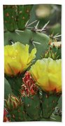 Yellow Prickly Pear Flowers Beach Towel