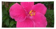 Bright Pink Hibiscus Beach Towel