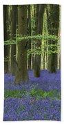 Stunning Bluebell Forest Landscape Image In Soft Sunlight In Spr Beach Sheet