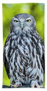 Barking Owl Beach Towel by Rob D Imagery