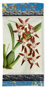 Orchid Framed On Weathered Plank And Rusty Metal Beach Towel