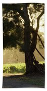 A New Day - Magpie Springs - Adelaide Hills Wine Region - South Australia Beach Towel