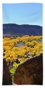 Gorgeous View Of Golden Cottonwood Trees In Canyon Beach Towel