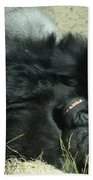 Adult Silverback Gorilla Laying Down With Anguished Expression Beach Towel