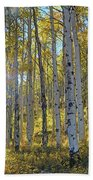 Afternoon Aspens Beach Towel