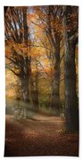 Afternoon Light In Fall Colors Of New England Beach Towel