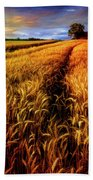 Amber Waves Of Grain Painting  Beach Towel