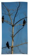 American Crows In Bare Tree Beach Towel