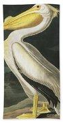 American White Pelican, Pelecanus Erythrorhynchos By Audubon Beach Towel