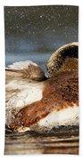 American Wigeon Splash Beach Towel by Sue Harper