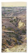 Amidon April Prairie Reverie Beach Towel