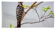 Arizona Ladderback Woodpecker Beach Towel