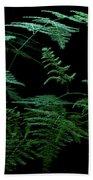 Asparagus Fern Beach Towel