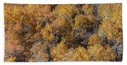 Aspen Autumn Leaves Beach Sheet