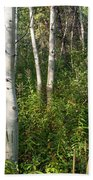 Aspen Solitude Beach Towel
