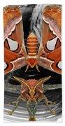 Atlas Moth8 Beach Sheet