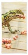 Australian Water Dragon Beach Towel