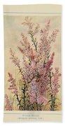 Australian Wild Flowers  8 Beach Towel