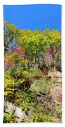 Autumn Color On Newfound Gap Road In Smoky Mountains National Park Beach Towel