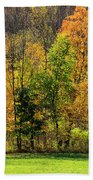 Autumn Colour In Southern Ontario Beach Sheet