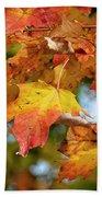 Autumn Colour Beach Towel