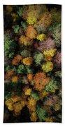 Autumn Forest - Aerial Photography Beach Towel