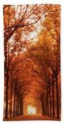 Autumn Lights At Groeneveld Beach Towel
