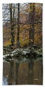 Autumn On The Kings River Beach Towel