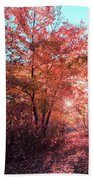 Autumn Path Reimagined Beach Towel