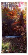 Autumn Starburst Beach Towel