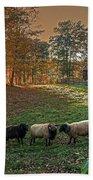 Autumn Sunset At The Old Farm Beach Sheet