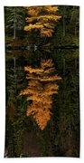 Autumn Tamarack  Beach Towel by Doug Gibbons