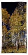 Autumn Walk In The Woods Beach Towel