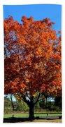 Autumnal Beauty Beach Towel