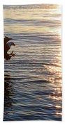 Bald Eagle At Sunset Beach Towel