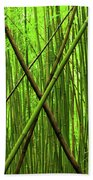 Bamboo X Beach Towel