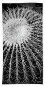 Barrel Cactus Black And White Beach Towel