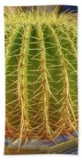 Barrel Cactus Royal Palms Phoenix Beach Towel