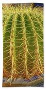 Barrel Cactus Royal Palms Phoenix Beach Sheet