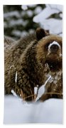 Bear In The Snow Beach Towel