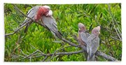 Beautiful Galah Birds With Babies. Wilsons Promontory National Park, Australia Beach Towel