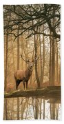 Beautiful Landscape Image Of Still Stream In Lake District Fores Beach Towel