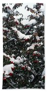 Berries And Snow Beach Towel